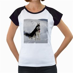 Siberian Husky Sitting in snow Women s Cap Sleeve T