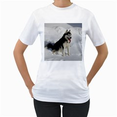 Siberian Husky Sitting in snow Women s T-Shirt (White) (Two Sided)