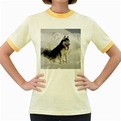 Siberian Husky Sitting in snow Women s Fitted Ringer T-Shirts
