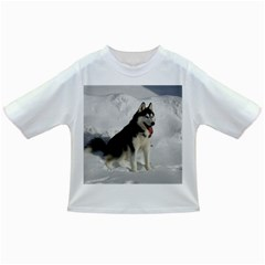 Siberian Husky Sitting in snow Infant/Toddler T-Shirts