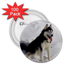 Siberian Husky Sitting in snow 2.25  Buttons (100 pack)
