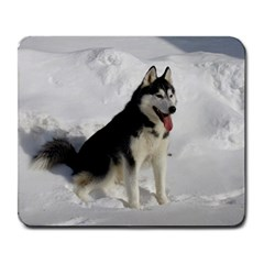 Siberian Husky Sitting in snow Large Mousepads