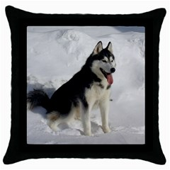 Siberian Husky Sitting in snow Throw Pillow Case (Black)