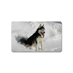 Siberian Husky Sitting in snow Magnet (Name Card)