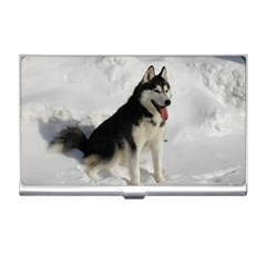 Siberian Husky Sitting in snow Business Card Holders