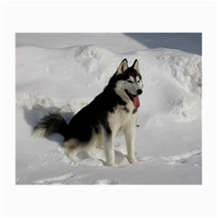 Siberian Husky Sitting in snow Small Glasses Cloth