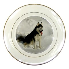 Siberian Husky Sitting in snow Porcelain Plates