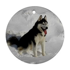 Siberian Husky Sitting in snow Round Ornament (Two Sides)