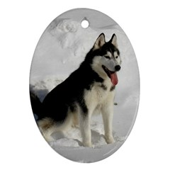Siberian Husky Sitting in snow Oval Ornament (Two Sides)