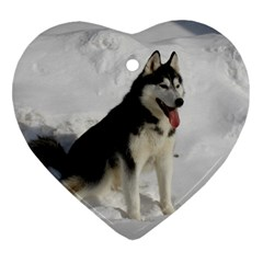 Siberian Husky Sitting in snow Heart Ornament (2 Sides)