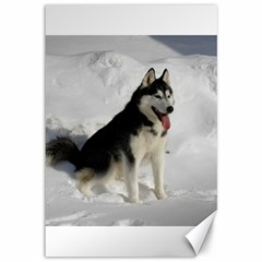 Siberian Husky Sitting in snow Canvas 12  x 18