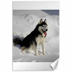 Siberian Husky Sitting in snow Canvas 24  x 36