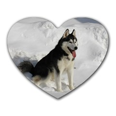 Siberian Husky Sitting in snow Heart Mousepads