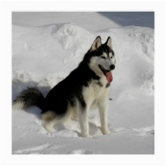 Siberian Husky Sitting in snow Medium Glasses Cloth