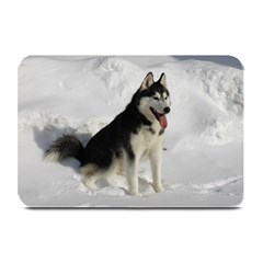 Siberian Husky Sitting in snow Plate Mats