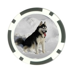 Siberian Husky Sitting in snow Poker Chip Card Guards