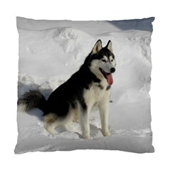 Siberian Husky Sitting in snow Standard Cushion Case (Two Sides)