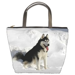 Siberian Husky Sitting in snow Bucket Bags