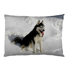 Siberian Husky Sitting in snow Pillow Case