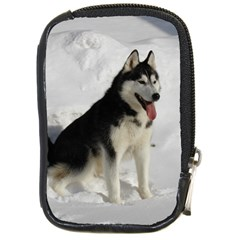 Siberian Husky Sitting in snow Compact Camera Cases