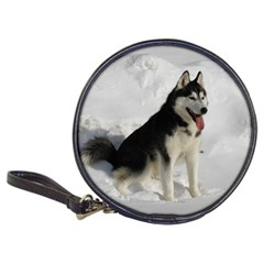 Siberian Husky Sitting in snow Classic 20-CD Wallets
