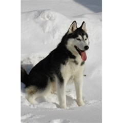 Siberian Husky Sitting in snow 5.5  x 8.5  Notebooks