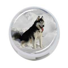 Siberian Husky Sitting in snow 4-Port USB Hub (One Side)