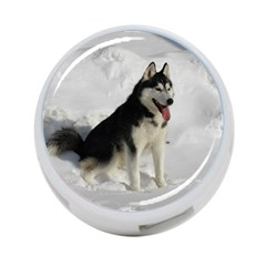 Siberian Husky Sitting in snow 4-Port USB Hub (Two Sides)