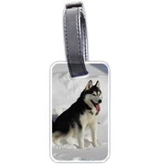 Siberian Husky Sitting in snow Luggage Tags (One Side)