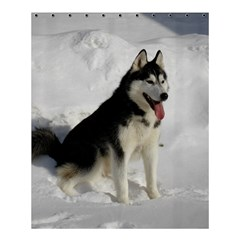 Siberian Husky Sitting in snow Shower Curtain 60  x 72  (Medium)