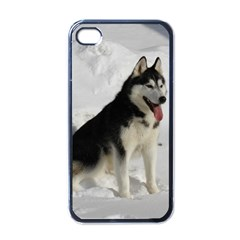Siberian Husky Sitting in snow Apple iPhone 4 Case (Black)