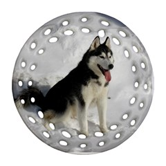 Siberian Husky Sitting in snow Round Filigree Ornament (2Side)