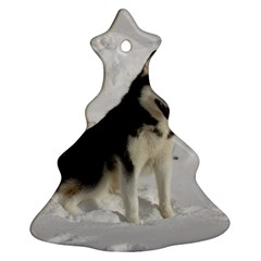Siberian Husky Sitting in snow Christmas Tree Ornament (2 Sides)