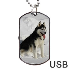 Siberian Husky Sitting in snow Dog Tag USB Flash (One Side)