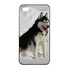 Siberian Husky Sitting in snow Apple iPhone 4/4s Seamless Case (Black)