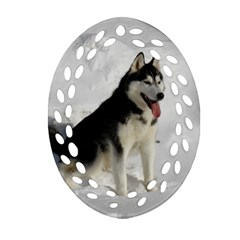 Siberian Husky Sitting in snow Oval Filigree Ornament (2-Side)