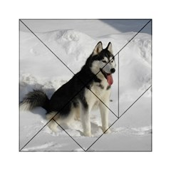 Siberian Husky Sitting in snow Acrylic Tangram Puzzle (6  x 6 )