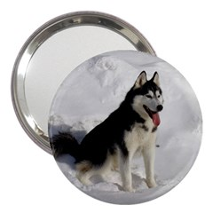 Siberian Husky Sitting in snow 3  Handbag Mirrors