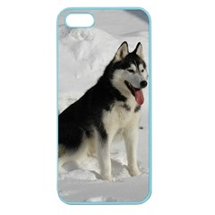 Siberian Husky Sitting in snow Apple Seamless iPhone 5 Case (Color)
