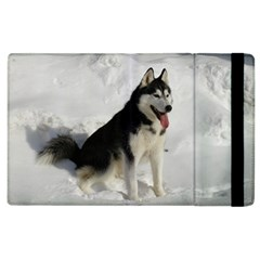 Siberian Husky Sitting in snow Apple iPad 3/4 Flip Case