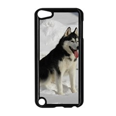 Siberian Husky Sitting in snow Apple iPod Touch 5 Case (Black)
