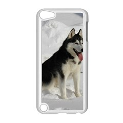 Siberian Husky Sitting in snow Apple iPod Touch 5 Case (White)