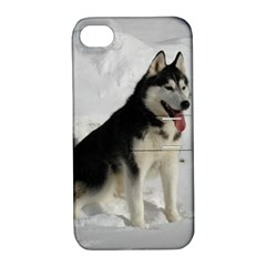 Siberian Husky Sitting in snow Apple iPhone 4/4S Hardshell Case with Stand