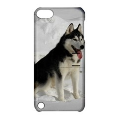 Siberian Husky Sitting in snow Apple iPod Touch 5 Hardshell Case with Stand