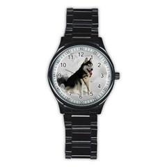 Siberian Husky Sitting in snow Stainless Steel Round Watch