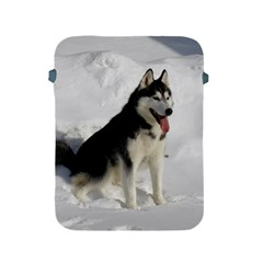 Siberian Husky Sitting in snow Apple iPad 2/3/4 Protective Soft Cases