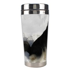 Siberian Husky Sitting in snow Stainless Steel Travel Tumblers