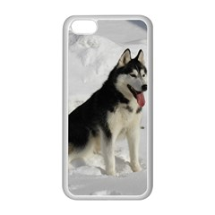 Siberian Husky Sitting in snow Apple iPhone 5C Seamless Case (White)