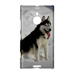 Siberian Husky Sitting in snow Nokia Lumia 1520