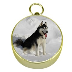 Siberian Husky Sitting in snow Gold Compasses